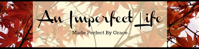 An Imperfect Life
